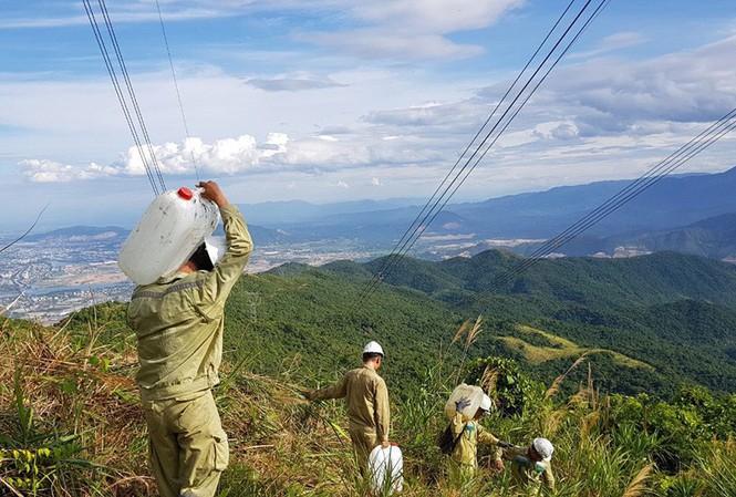 Nhân viên ngành điện tham gia chống cháy rừng