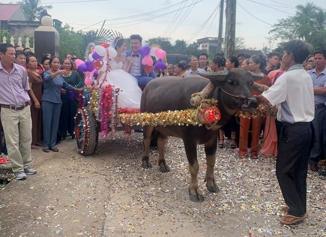 Dân mạng thích thú xem cặp đôi xứ Thanh rước dâu bằng xe trâu  - ảnh 4