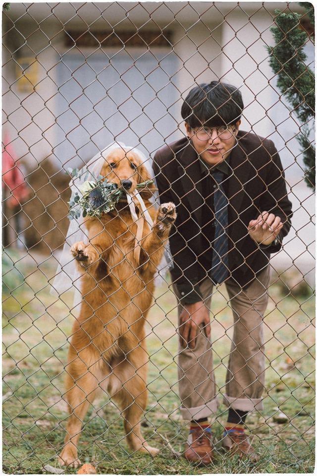 Chưa có người yêu, chàng trai đành chụp ảnh với chó cưng - ảnh 3