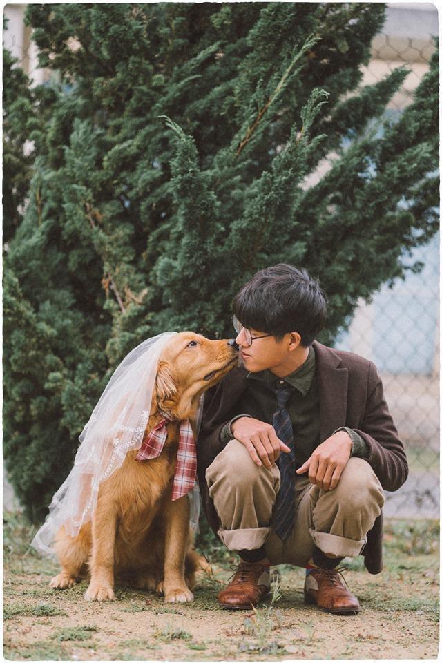 Chưa có người yêu, chàng trai đành chụp ảnh với chó cưng - ảnh 1
