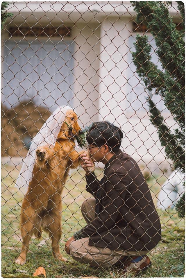 Chưa có người yêu, chàng trai đành chụp ảnh với chó cưng - ảnh 2