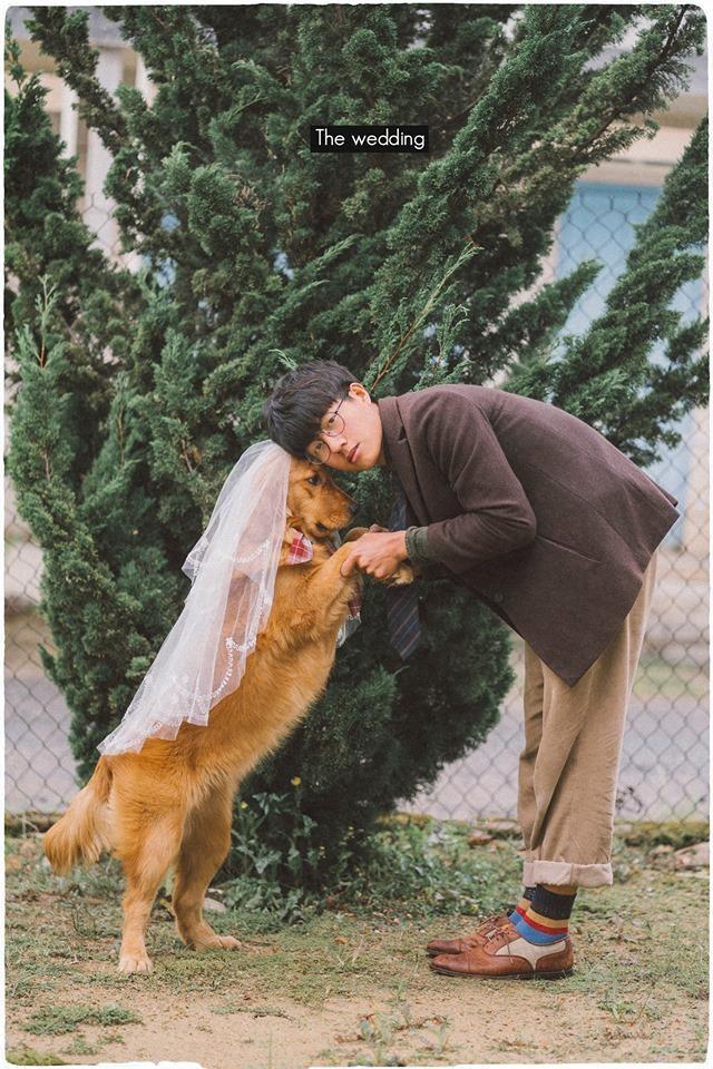 Chưa có người yêu, chàng trai đành chụp ảnh với chó cưng - ảnh 4