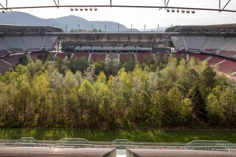 Mới- nóng - Video: Khám phá rừng cây rậm rạp giữa sân vận động
